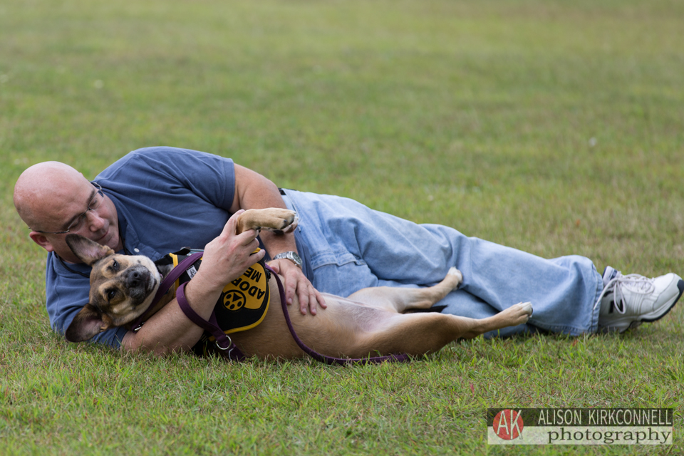 Homeless dog with her foster dad